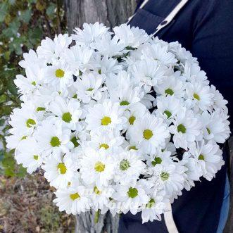 Букет белых кустовых хризантем